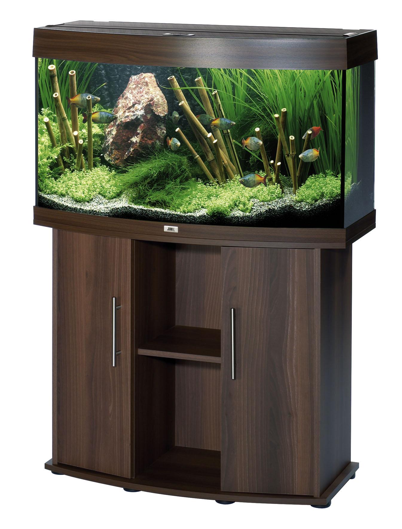 juwel vision speciaalzaak voor aquarianen en vijver liefhebbers met advies en ondersteuning. Black Bedroom Furniture Sets. Home Design Ideas
