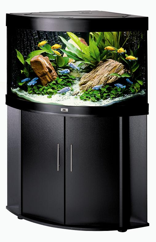 gallon corner aquarium tank Quotes