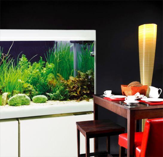 Eheim edition w1 speciaalzaak voor aquarianen en vijver liefhebbers met advies en - Meubel lijn roset ...