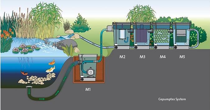 Pin vijver bron vijvers zonder vissen zijn rustgevend er for Natuurlijke vijver zonder pomp