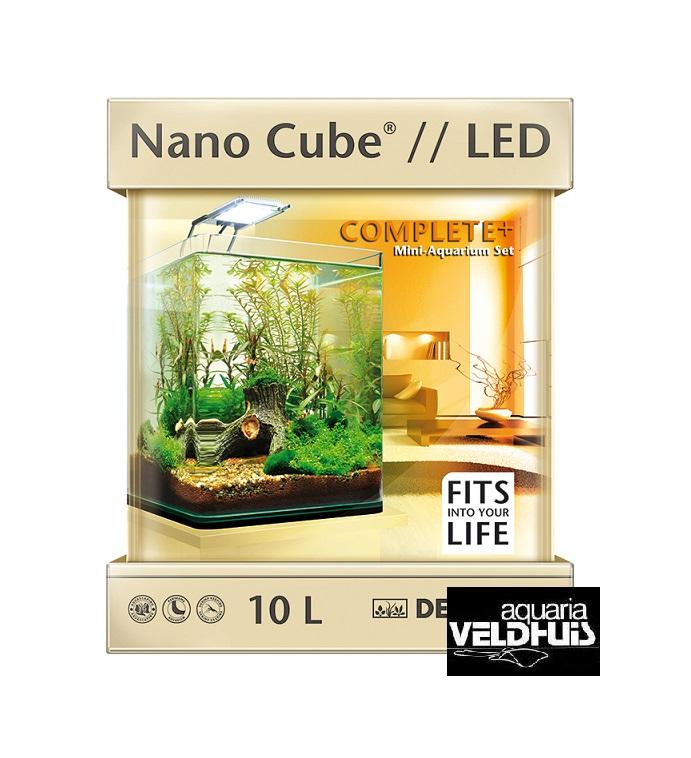 Dennerle Nano Cube 10 Liter Mit Led Beleuchtung Besatz Sind 6 Taiwan